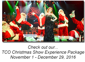 TCO Christmas Show Experience